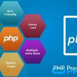 Web Designing Course Patiala